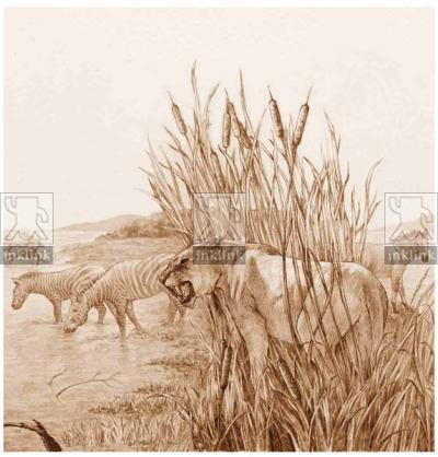 Il paleoambiente nella Valdichiana, particolare