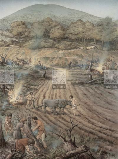 L'insediamento di epoca preistorica: l'aratura